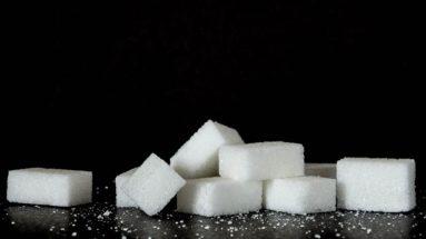 Zucker - Gift der Menschen